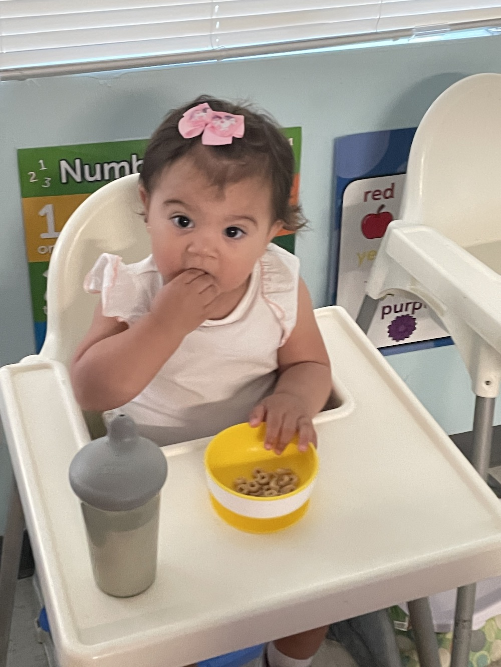 A toddler girl with a pink bow in her hair eats Cheerios with her fingers sitting in a high chair.
