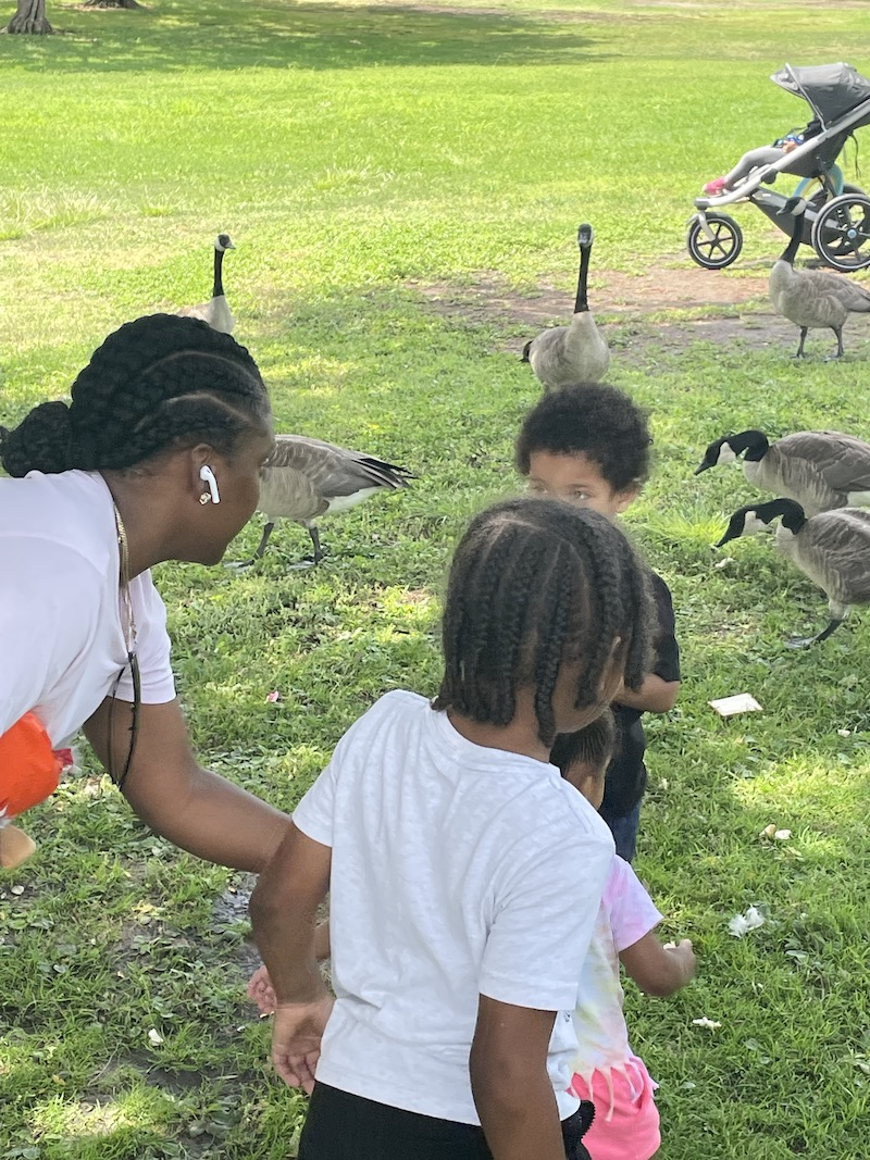 Teacher helping children get close to geese without being afraid of them.
