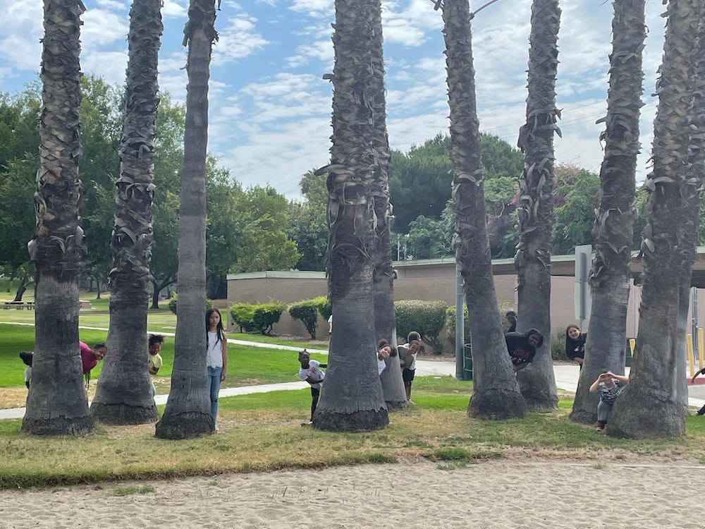 Kids are peeking from behind the palm trees, surprise for the camera to take a picture.