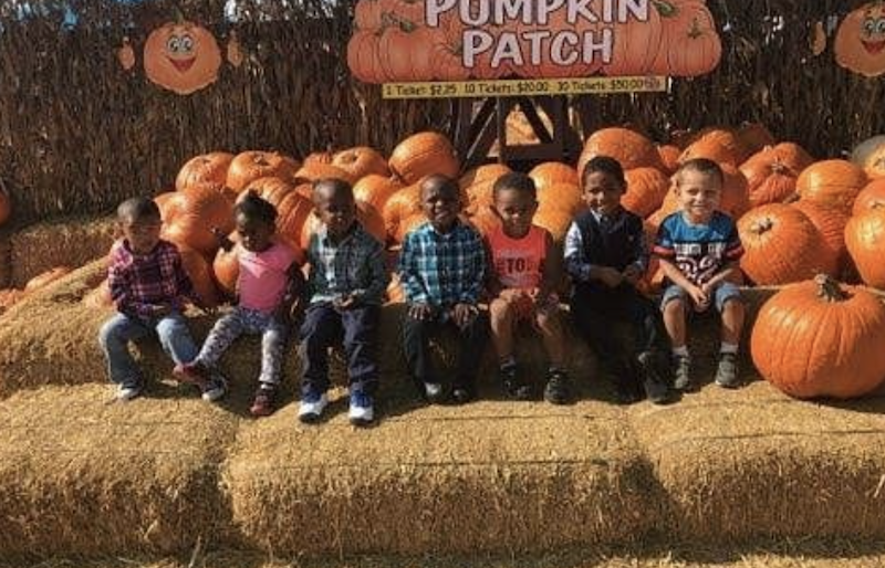 Seven kids are sitting on bails of hay in front of pumpkins at the pumpkin patch.