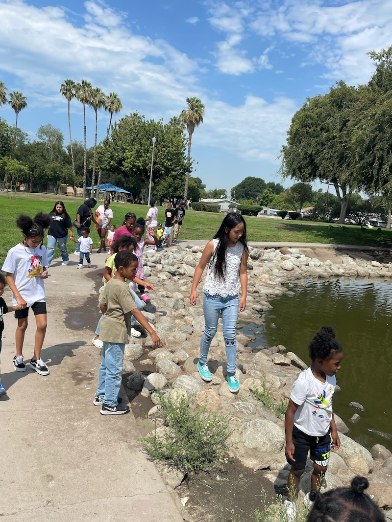 Kids at the park are standing on rocks by the pond.